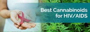 CAN MEDICAL CANNABIS (CBD) HELP TREAT HIV/AIDS?