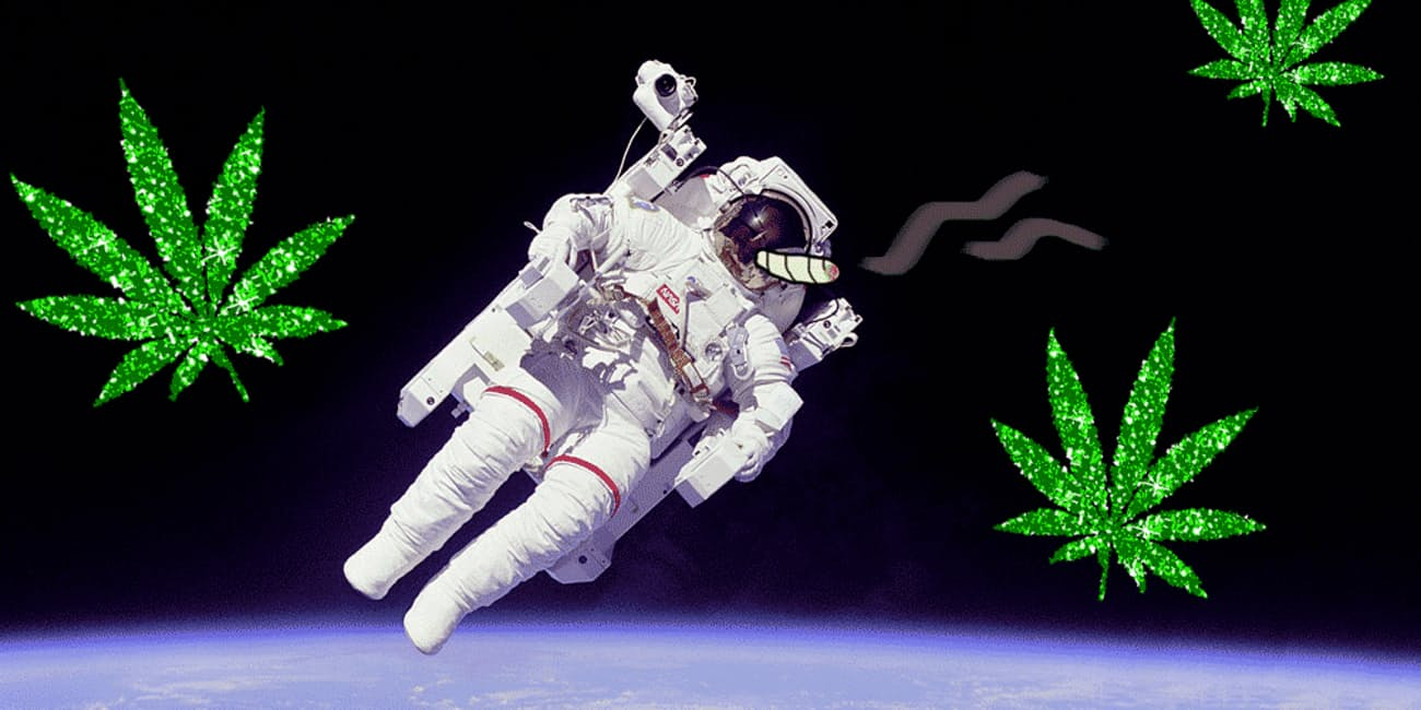 Plans by a Kentucky Company to study Hemp on Space Underway