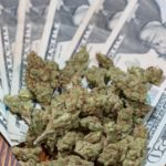 Attorneys General from 38 States Sends a Letter to Congress Leaders urging them to Bring Marijuana Money into the Banking System