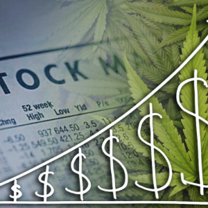 3 Cannabis stocks which could triple in value, according to Wall Street reports