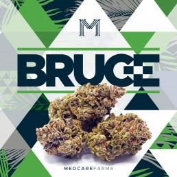 Bruce flower strain medcare farms